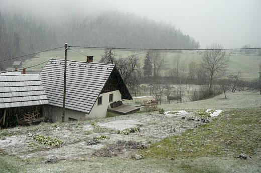 sneg v bohinju - november 2010