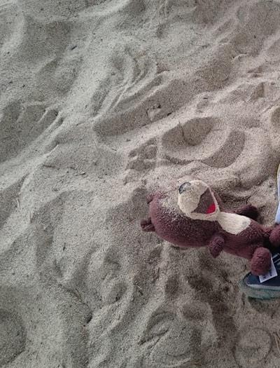 pesek v oči